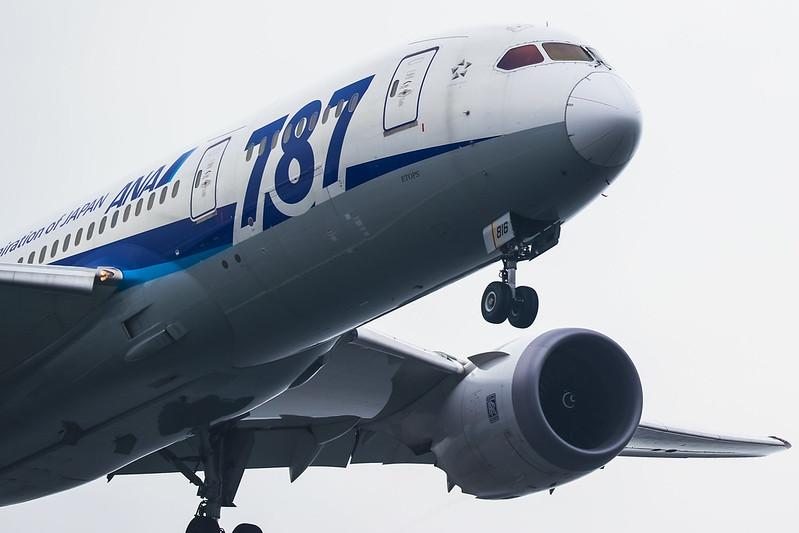 JA816A ANA 全日空 Boeing 787-8 Dreamliner