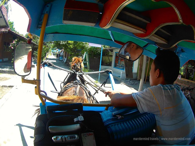 Horse Cart Ride in Gili Air