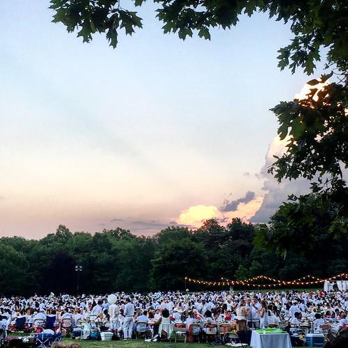 Dinner in White 2016 in Prospect Park (11)