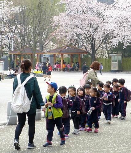 C16-Seoul-Grand Parc-j4 (2)