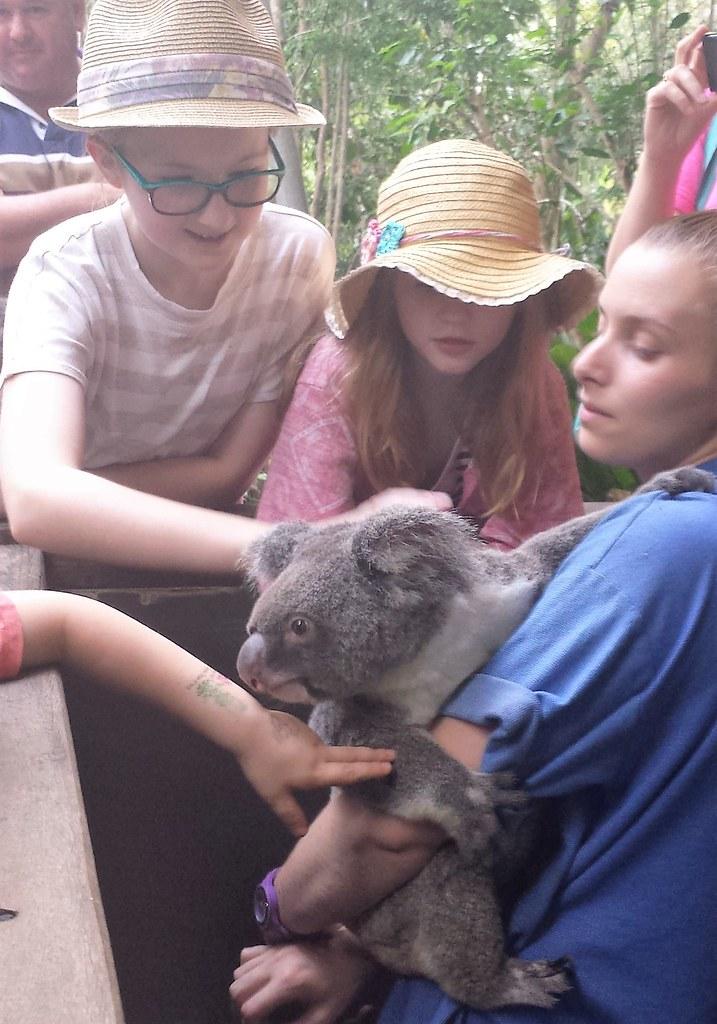 Cairns 2016 day 3 Hartley's Crocodile Adventures