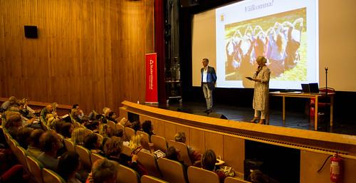 Integration och kulturmöten