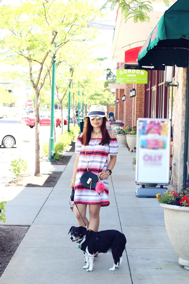 stripe-dress-summer-outfit-beagle-dog-5