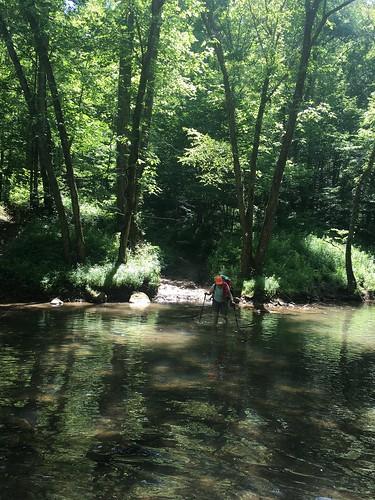 Sally Crossing the Creek