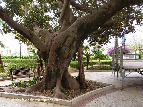 Park in Ribera
