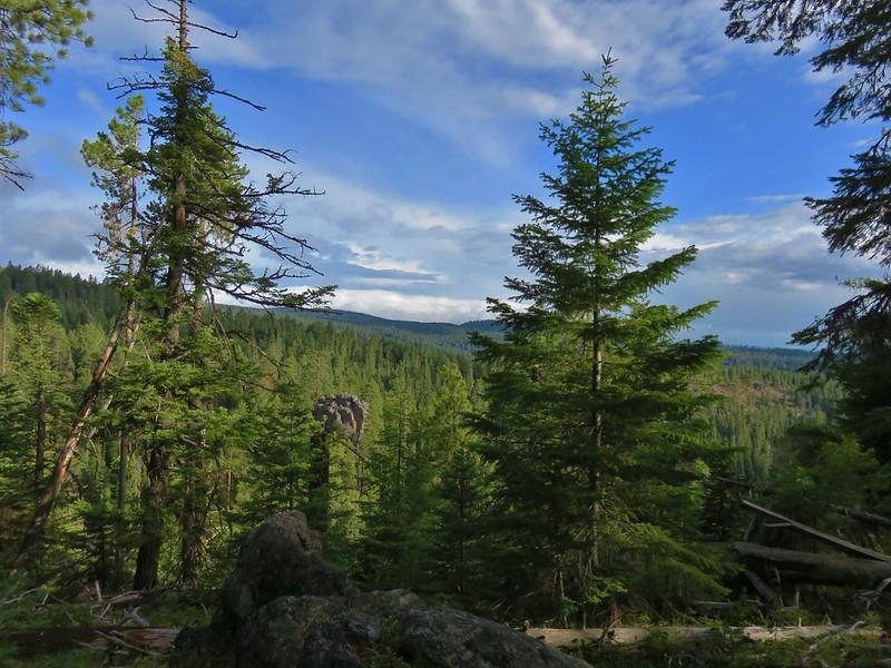 View from the Cedar Creek Trail