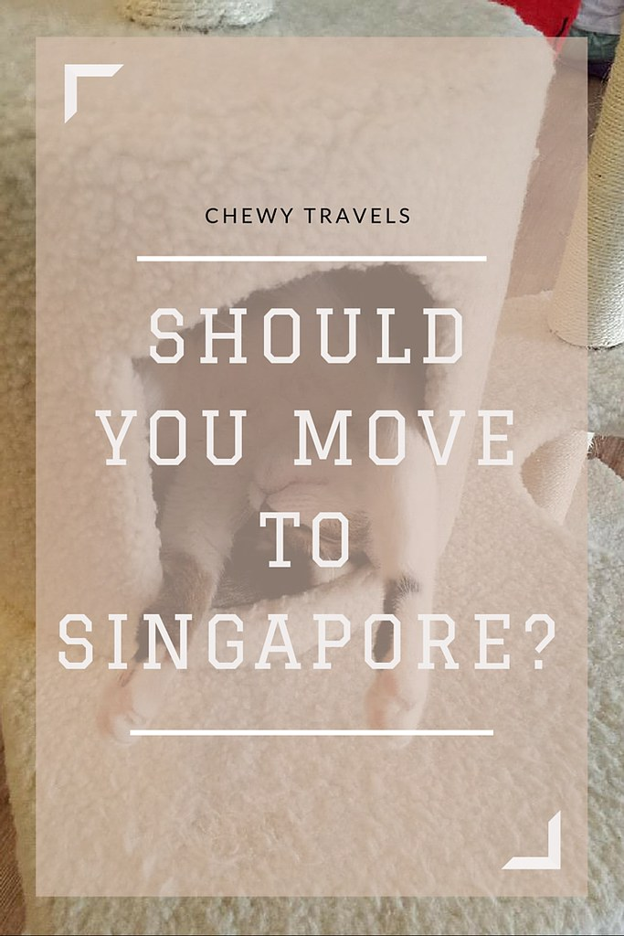 Should you move to Singapore?