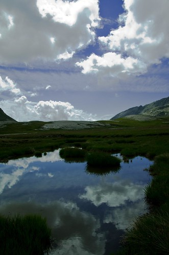 Lacs des lignins