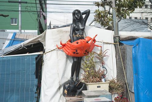 Junk yard 大阪市西成区萩之茶屋 / LEICA M8 × ELMARIT-M 21mm F2.8