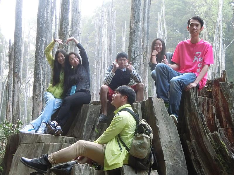 Taiwan Island trips。Couchsurfing。環島景點。南投秘境。忘憂森林。17度C隨拍。 (36)