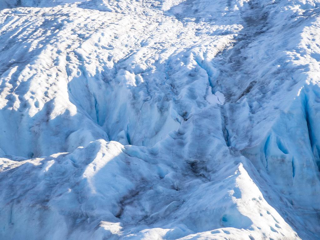 Exit Glacier-19
