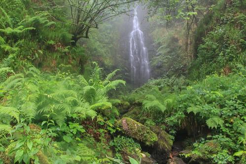 Parque Natural de #Gorbeia #Orozko #DePaseoConLarri #Flickr - -484