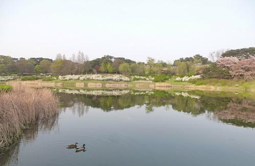 C16-Seoul-Parc Olympique-Mong-Chon Lake (9)