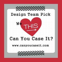 Can You CASE It - Winner