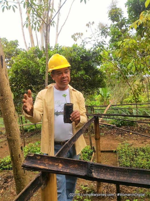 LivingMarjorney-Binahon-Agroforestry-Farm-Bukidnon (54)
