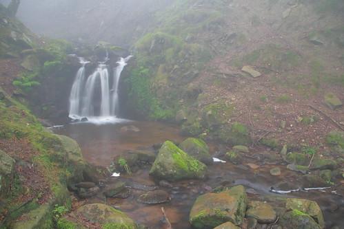 Parque natural de #Gorbeia #Orozko #DePaseoConLarri #Flickr -062