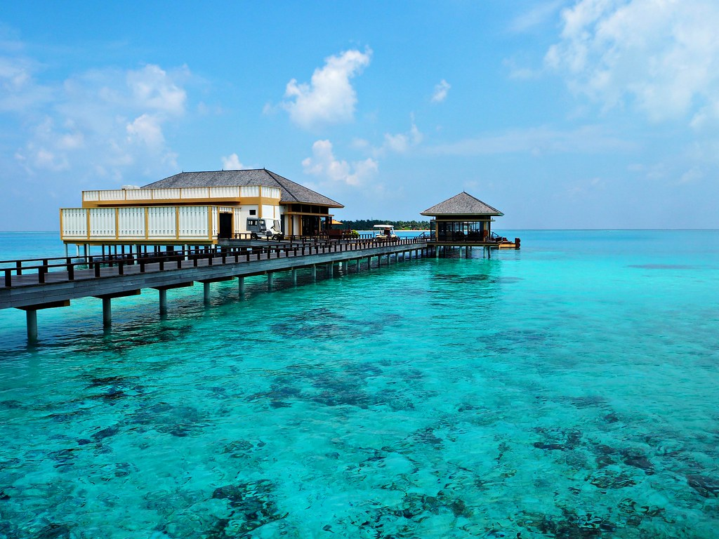 The Little Magpie Velavaru Maldives Review 4