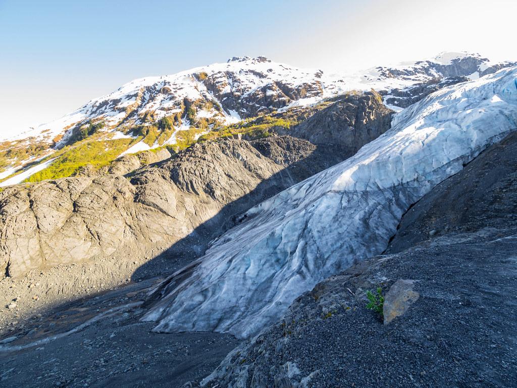 Exit Glacier-27
