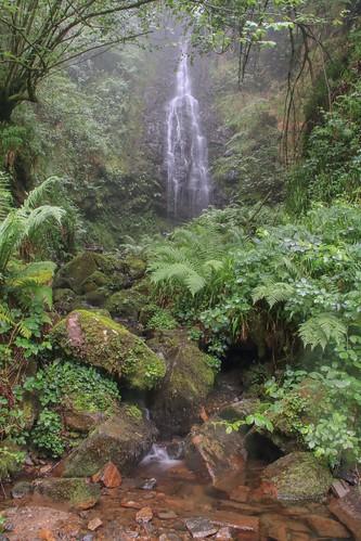 Parque Natural de #Gorbeia #Orozko #DePaseoConLarri #Flickr - -483