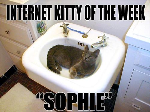 IKOTW Sophie