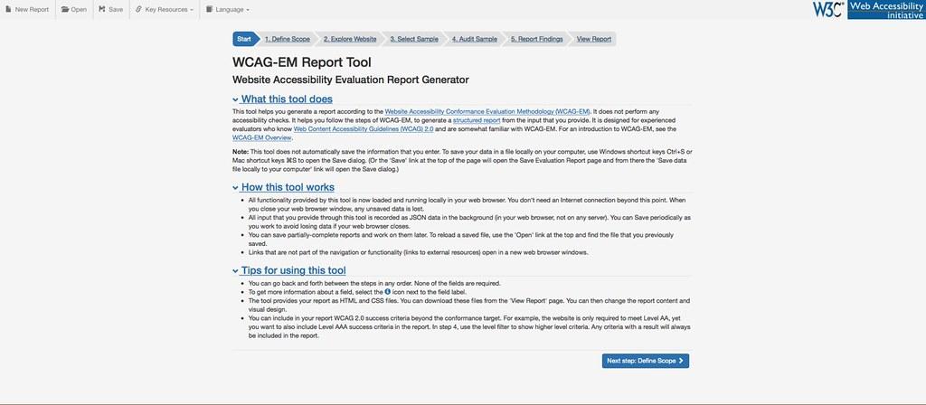 Captura del WCAG-EM Report Tool