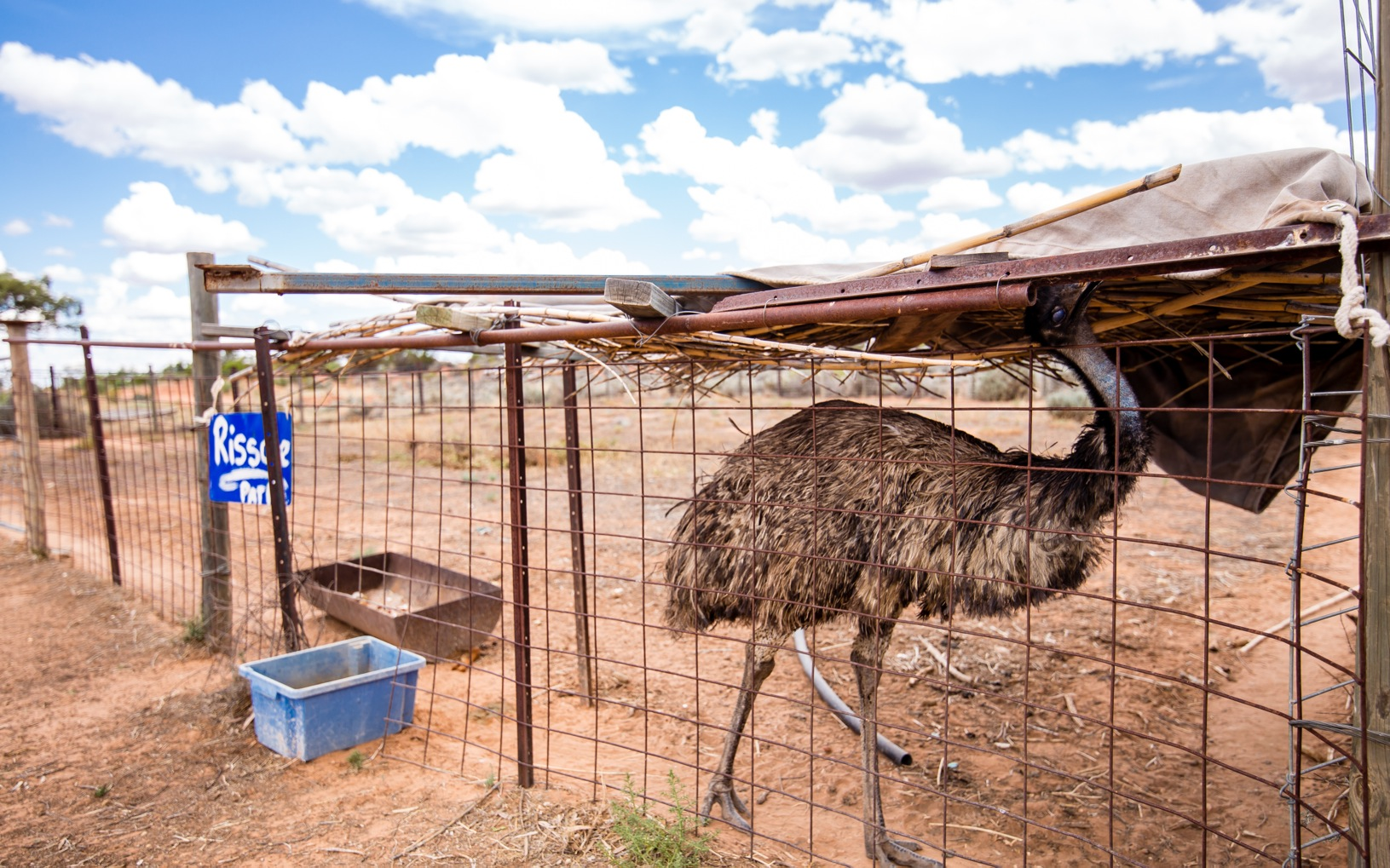 Campingplads i outbacken i Australien