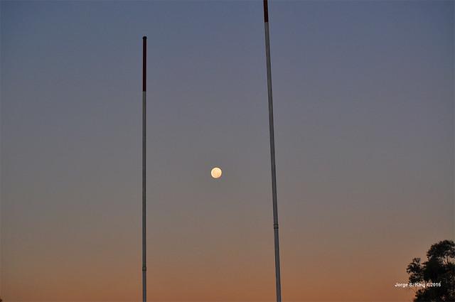 Moon Rugbier