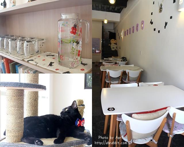 29435248714 8ac19dafe1 z - 【熱血採訪】[台中]朵喵喵咖啡館--愛貓人士請進,這裡是貓咪中途之家、台中貓餐廳、貓咖啡廳@東區 自由路(已歇業)