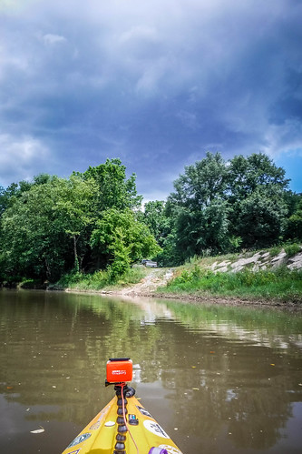 Goat Island in the Broad River-129