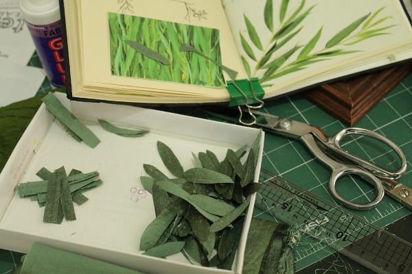 Leaves, so many leaves - Misericordia