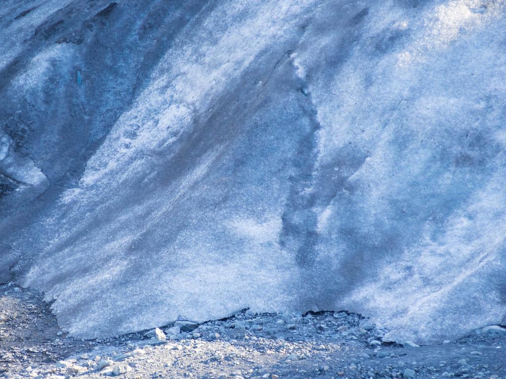 Exit Glacier-20