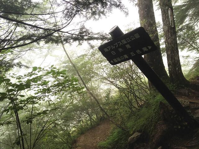 鳳凰山 ドンドコ沢 白糸滝入口