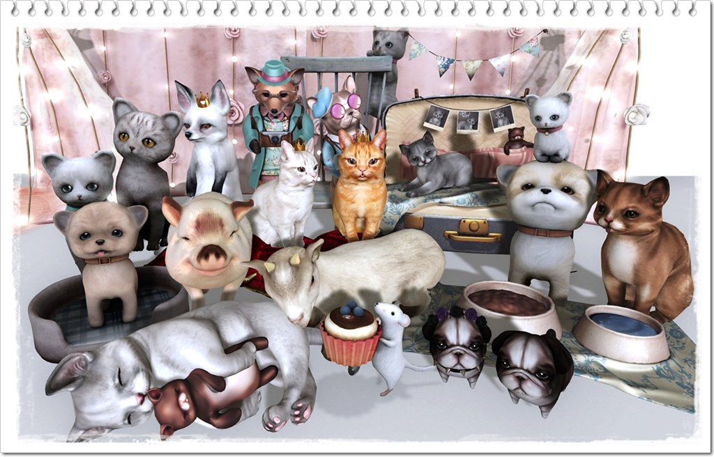 My inventory(Animals)②