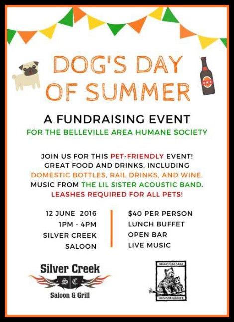 Dog's Day 6-12-16