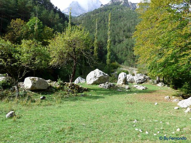 Gresolet a Bagà -14- Cal Ciscu -07- (05-10-2016)