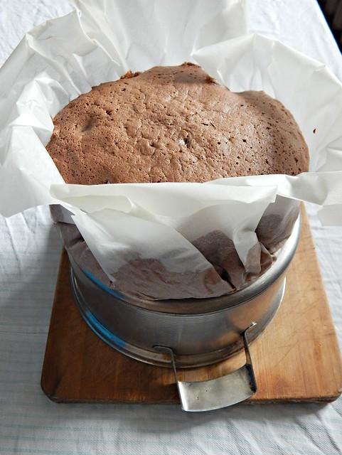 Шоколадный бисквит с шоколадом, корицей и кофе. Рецепт с пошаговыми фотографиями и очень красивое описание. | horoshogromko.ru