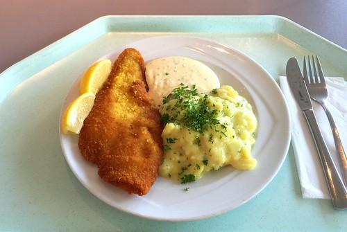 Baked plait with remoulade & potato gherkin salad / Gebackene Scholle mit Remoulade & Kartoffel-Gurkensalat