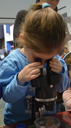 Girl uses microscope