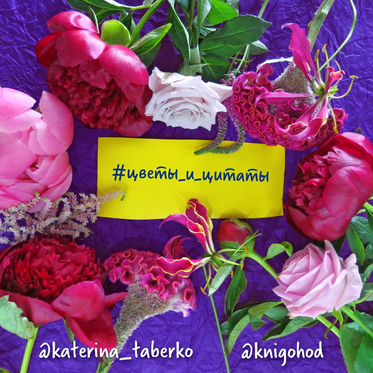 цветыицититы