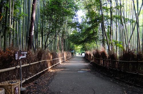 野宮神社へ