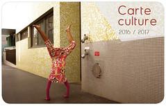 carte_Culturec2016-rond