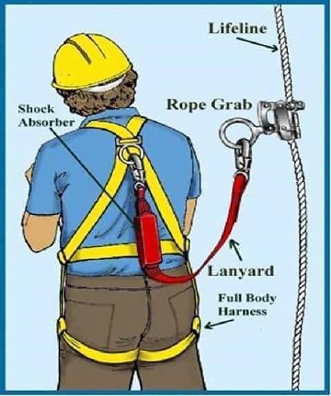 dây an toàn toàn thân