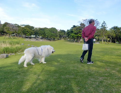 jp16-Nagasaki-Seaside Park-5a7 (5)