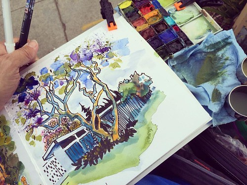 Horizontal sketching set-up and #jacaranda #tree #sketchbook #sketching #urbansketch #urbansketghing #paloalto #watercolor #palette