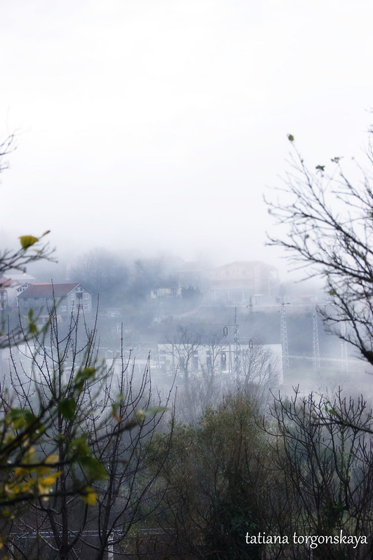 Туман в дождливый день