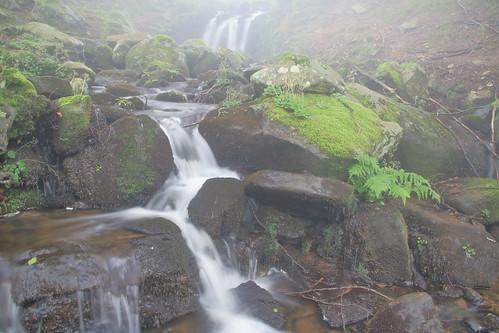 Parque natural de #Gorbeia #Orozko #DePaseoConLarri #Flickr -060