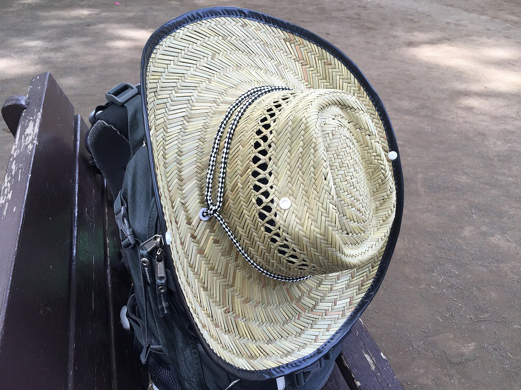 20160604_麦藁帽子
