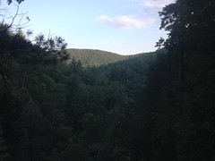 Another View From the Top of Davis Creek Falls
