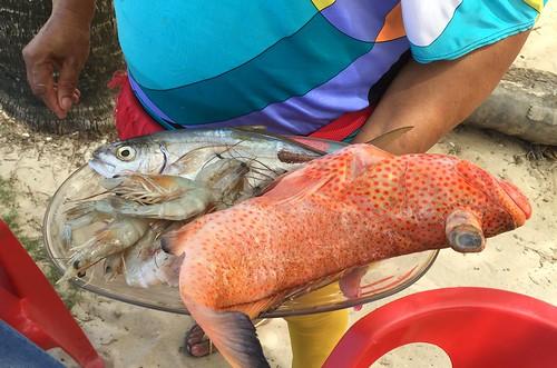 Fresh fish / Frischer Fisch - Las Galeras Beach