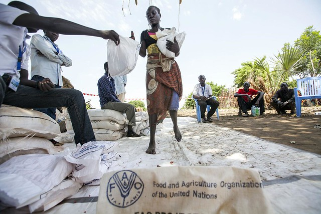 Seeds distribution in South Sudan
